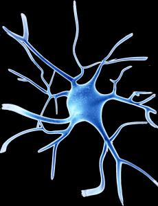 neuron-bg